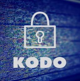 ZAPRASZAMY DO KONSULTACJI                 Kodeksu postępowania i dobrych praktyk w zakresie ochrony danych osobowych w działaniach marketingu bezpośredniego (KODO)